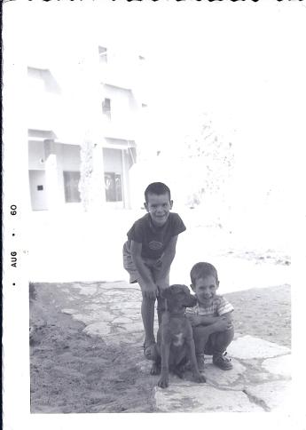 נעם, מיכה וחומי, 1960